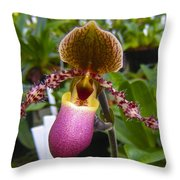 Orchid 31 Throw Pillow