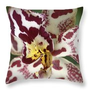 Orchid 32 Throw Pillow
