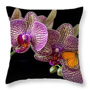 Orchid And Orange Butterfly Throw Pillow