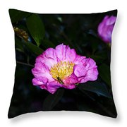 Orchid Camellia Pink - Camellia Sasanqua Throw Pillow