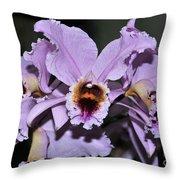 Orchid Cattleya Percivaliana Christmas Cattleya Throw Pillow