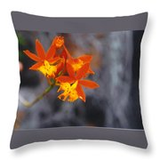 Orchid Circus Throw Pillow