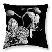 Orchid Throw Pillow by Davorin Mance