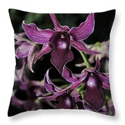 Orchid Dendrobium Lavender Star 204 Throw Pillow