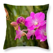 Orchid Dendrobium Throw Pillow