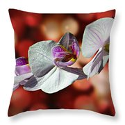 Orchid Flower Photographic Art Throw Pillow