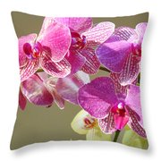 Orchid Flowers Art Prints Pink Orchids Throw Pillow