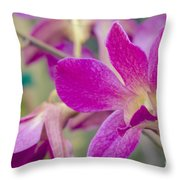 Orchid - Haliimaile Spring Pink Throw Pillow