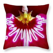 Orchid Harlequinn-pansy Orchid Throw Pillow