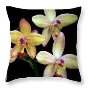 Orchid In Blossom Throw Pillow