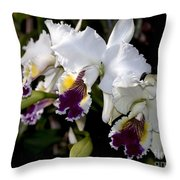 Orchid Laeliocattleya Lucie Hausermann With Buds 4074 Throw Pillow