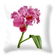 Orchid - Lc. Culminant La Tuilerie Throw Pillow