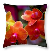 Orchid Melody Throw Pillow by Karen Wiles