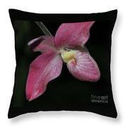 Orchid Phragmipedium Hanna Popow 2 Of 2 Throw Pillow