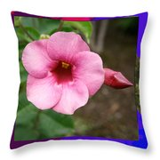 Orchid Pink Flower Photographed At Costa Rica Sensual Smile Graphic Dital Painted Background Ideal Throw Pillow