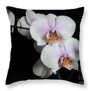 Orchid Portrait Throw Pillow