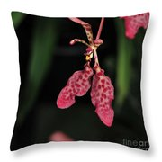 Orchid Red Renanthera Unnamed Throw Pillow