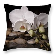 Orchid - Sensuous Virtue Throw Pillow by Tom Mc Nemar