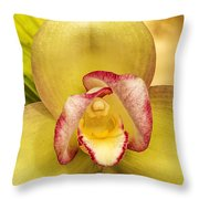 Orchid Series 1 Throw Pillow