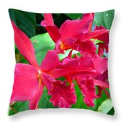 Orchid Series 3 Throw Pillow