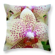 Orchid Series 5 Throw Pillow