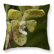 Yellow Dragon Orchid Throw Pillow