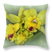 Orchid Trio Throw Pillow