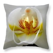 Orchid Upclose Abstract Throw Pillow