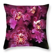 Orchid Vuylstekeara Aloha Passion Throw Pillow