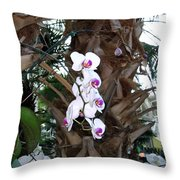Orchids In The Opryland Hotel In Nashville Tennessee Throw Pillow