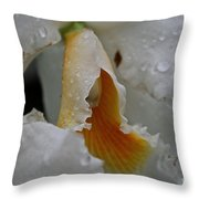 Orchid's Inner Glow Throw Pillow