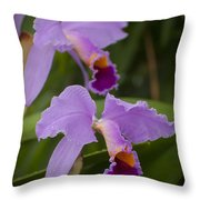 Orchids Pictures 1 Throw Pillow