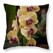 Orchids Pictures 10 Throw Pillow