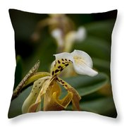 Orchids Pictures 28 Throw Pillow