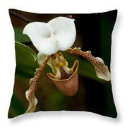 Orchids Pictures 31 Throw Pillow