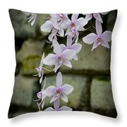 Orchids Pictures 47 Throw Pillow