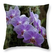 Orchids Square Format Img 5437 Throw Pillow