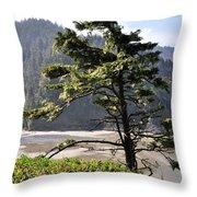 Oregon - Heceta  Throw Pillow