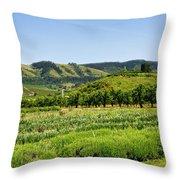 Oregon - Hood River Throw Pillow