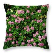 Oregon Azaleas Throw Pillow