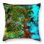 Oregon Cascades Nasa Satellite Throw Pillow