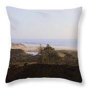 Oregon Coast 3 Throw Pillow