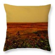 Oregon Coastline Ll Throw Pillow