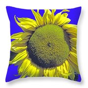 Oregon II Throw Pillow