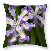 Oregon Irises In Bloom Closeup Throw Pillow