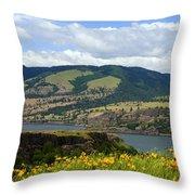 Oregon Landscape Throw Pillow