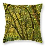 Oregon Rainforest Throw Pillow