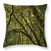 Oregon Rainforest Green Throw Pillow