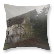 Oregon Relic Throw Pillow