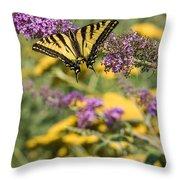 Oregon Swallowtail In The Garden  Throw Pillow
